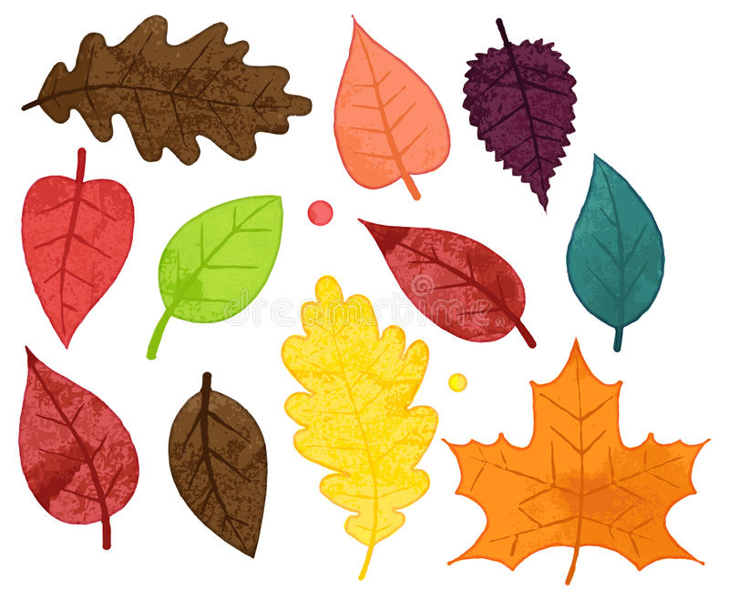Vector Collection of Watercolor Style Autumn Leaves. And Droplets royalty free illustration