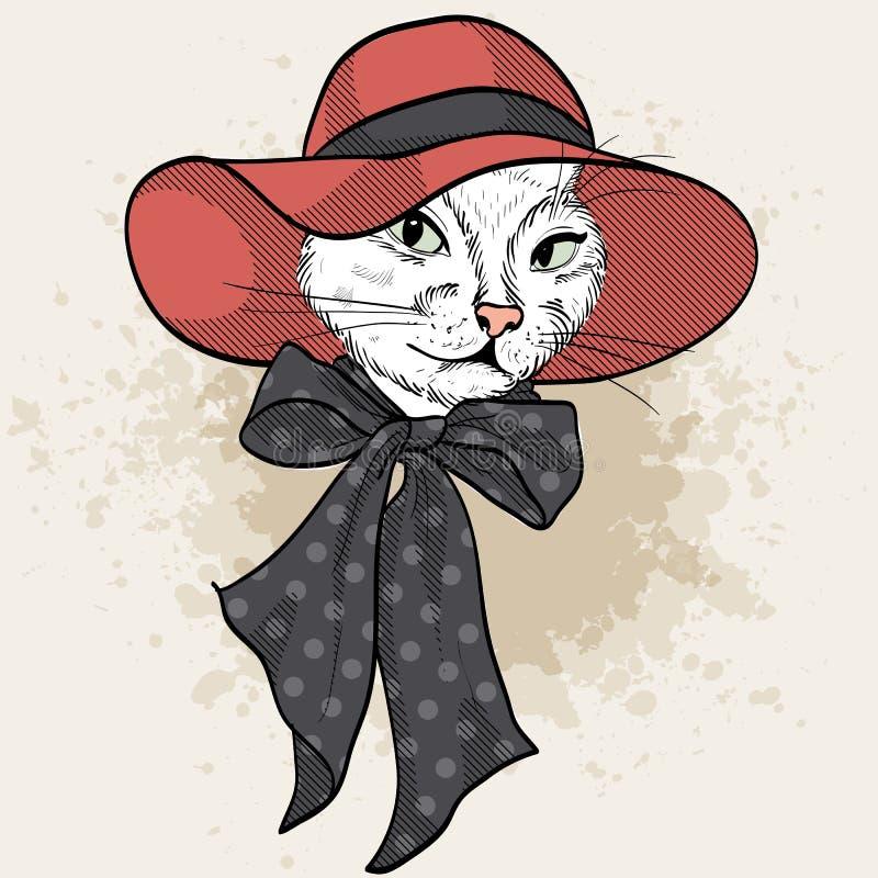 Vector color set of elegant cat woman face royalty free illustration