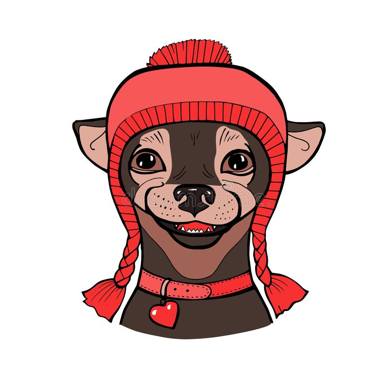 Vector color sketch of the cartoon hipster cute dog Chihuahua breed in knitted hat vector illustration
