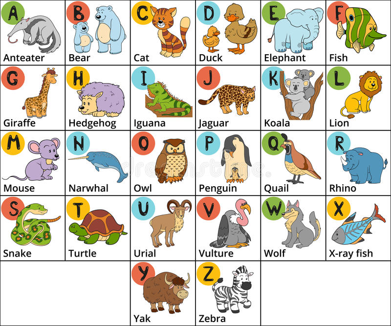 Vector Color Zoo Alphabet With Cute Animals On White Background ...