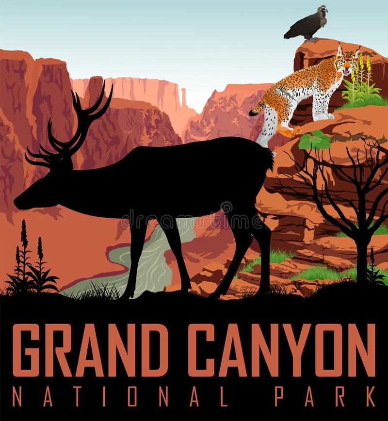 Vector Colorado river in Grand Canyon National Park with deer, eagle and lynx. Illustration stock illustration