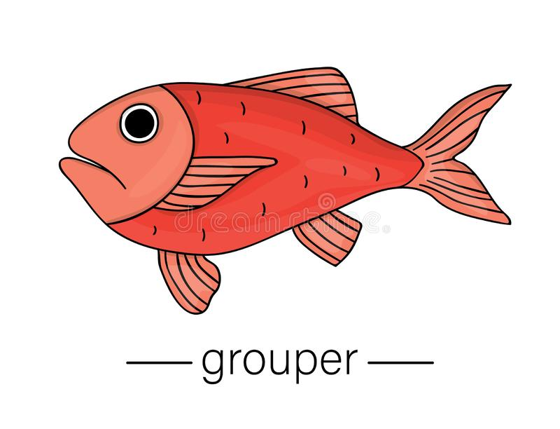 Vector colored grouper. Cartoon style sea fish icon royalty free illustration
