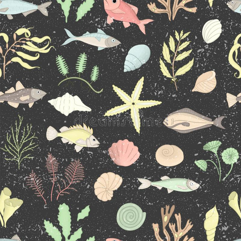 Vector colored seamless pattern of sea shells, fish, seaweeds isolated on black textured background vector illustration