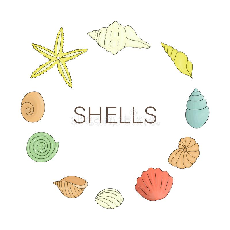 Vector  colored set of shells royalty free illustration