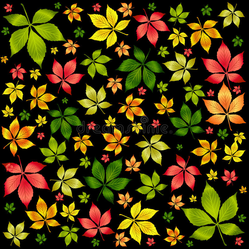 Download Vector Colorful Autumn Leafs .Autumn Background Stock Vector - Image: 11416573