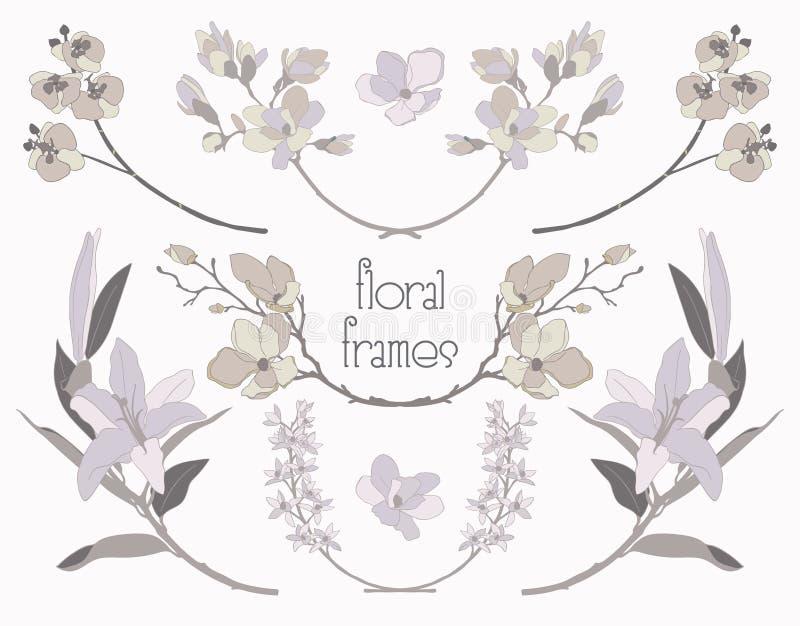 Vector Colorful Floral Text Frames, Branches, Laurels vector illustration