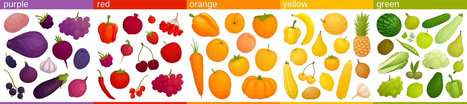 Vector colorful food. Vegetables and fruits are united in groups according to color. Set of multicolored fruits and vegetables assorted by colors. Vector stock illustration