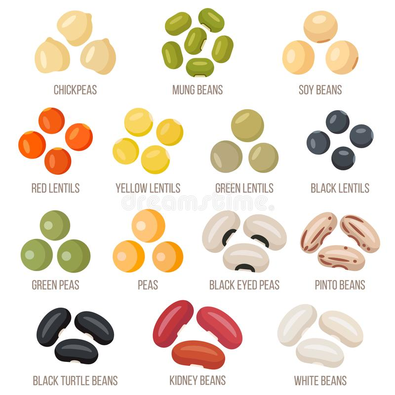 Beans set, vector illustration. Flat style. Vector and colorful set of different legumes. Flat style illustration royalty free illustration