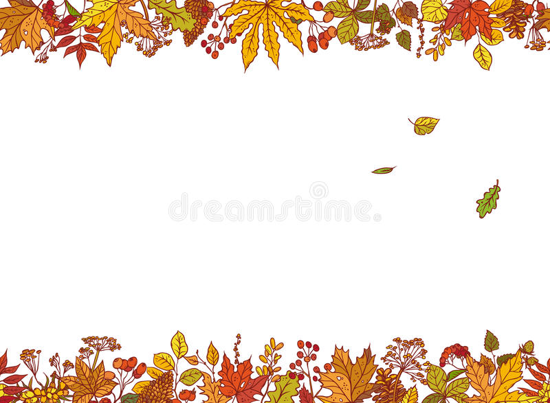 Vector Colourful Outline Background Sketch Autumn Leaves Stock