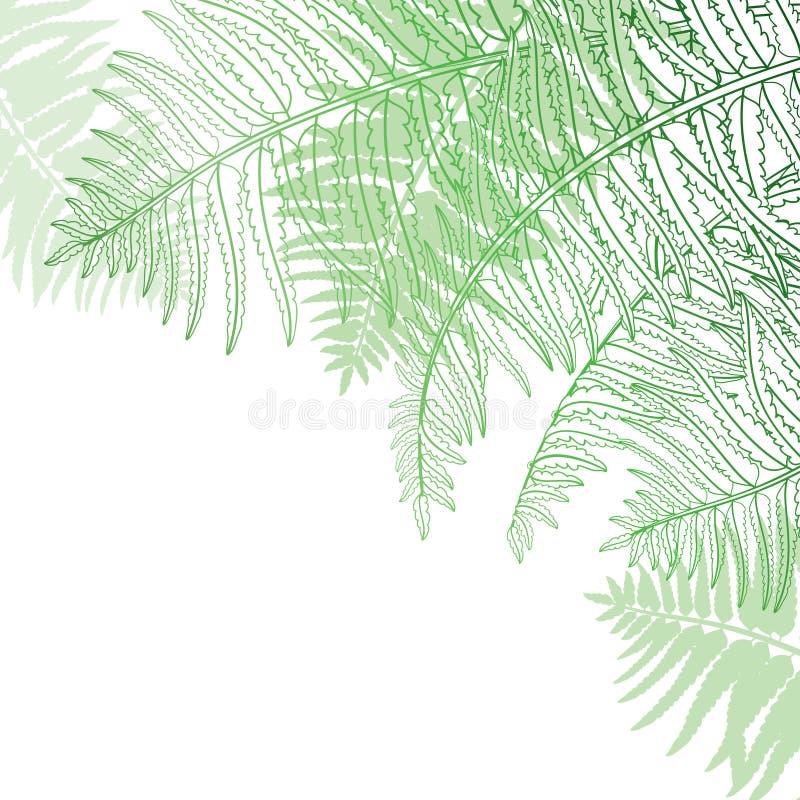 Vector a composição de canto da samambaia fóssil da planta da floresta do esboço com a fronda no verde pastel colorida isolada no ilustração stock