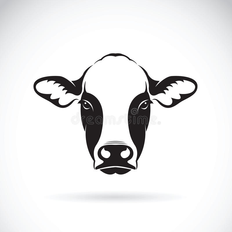 Vector of cow face design on white background.Animal. royalty free illustration