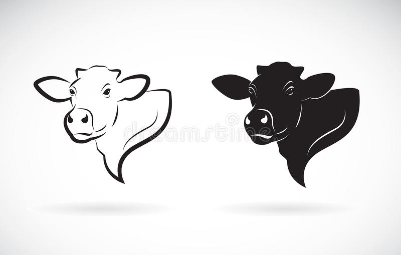 Vector of cow head design on white background. Farm. stock illustration