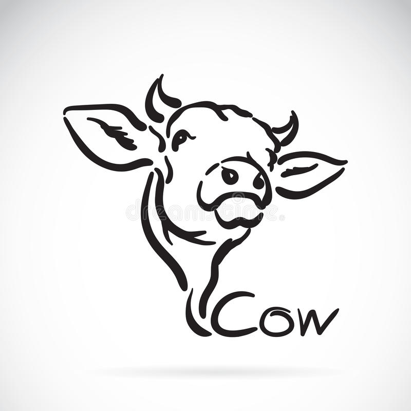 Vector of a cow royalty free illustration