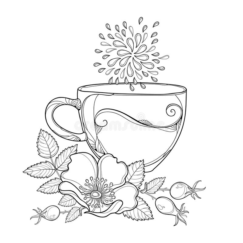Vector cup of Rosehip herbal tea isolated on white background. Outline Dog rose flower, hips and leaves in contour style. Vector cup of Rosehip herbal tea stock illustration