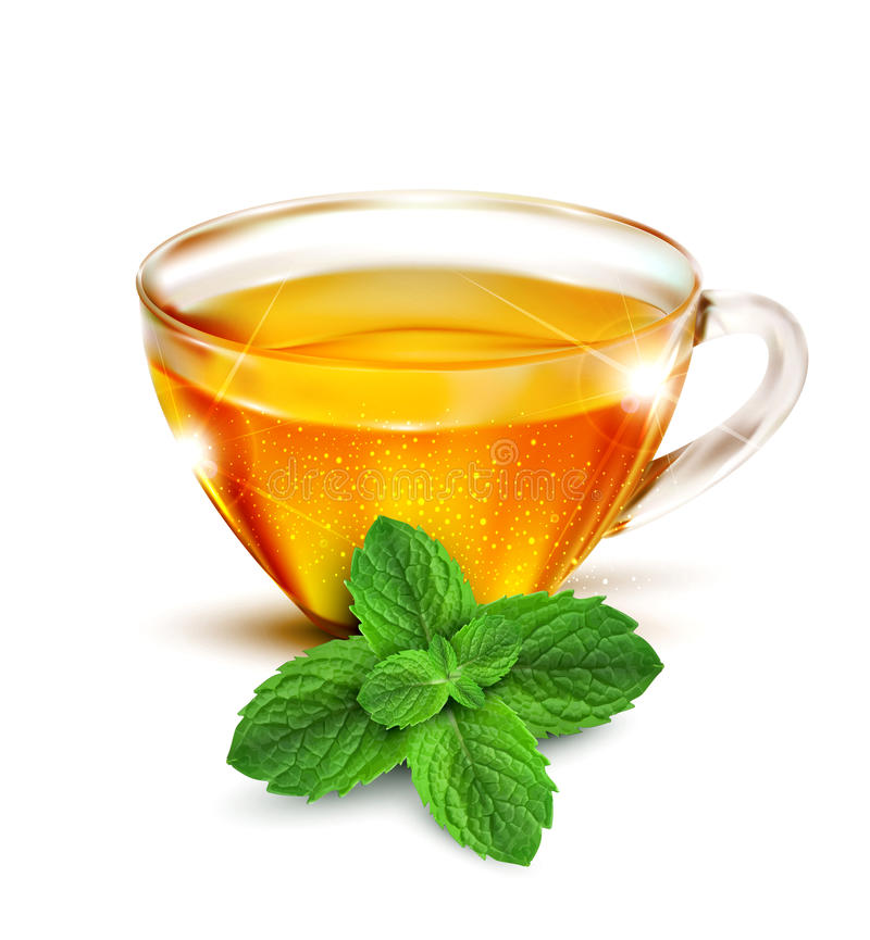 Vector cup of tea with mint leaves royalty free illustration