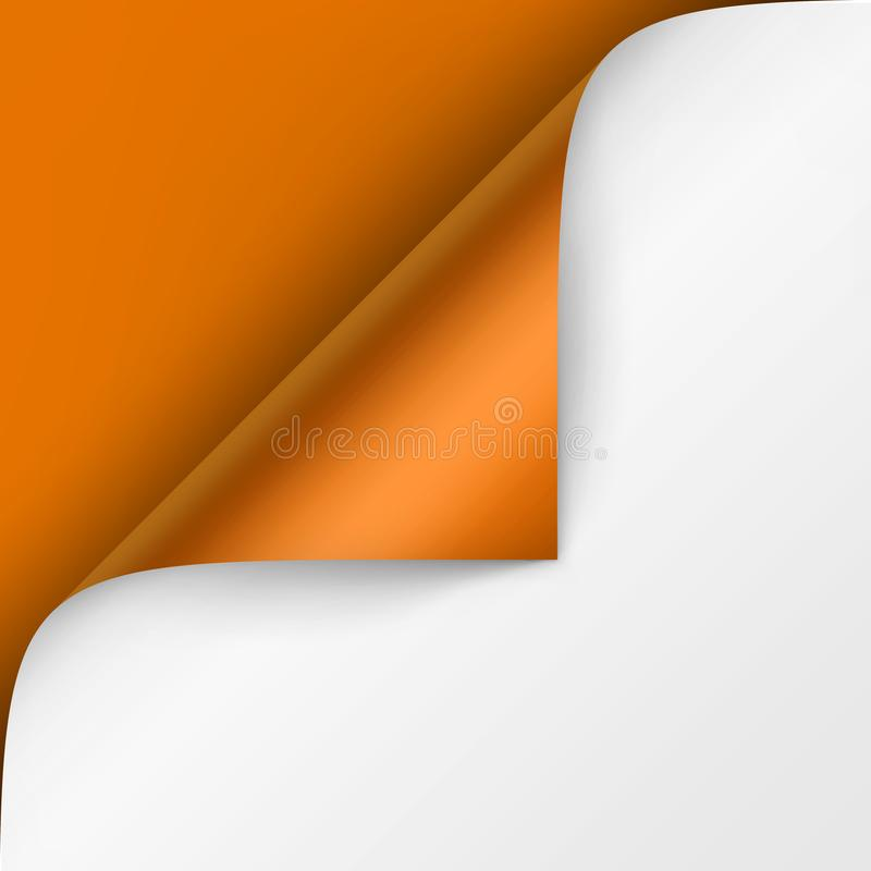 Vector Curled corner of White paper with shadow Mock up Close up Isolated on Bright Orange Background. Vector Curled corner of White paper with shadow Mock up vector illustration