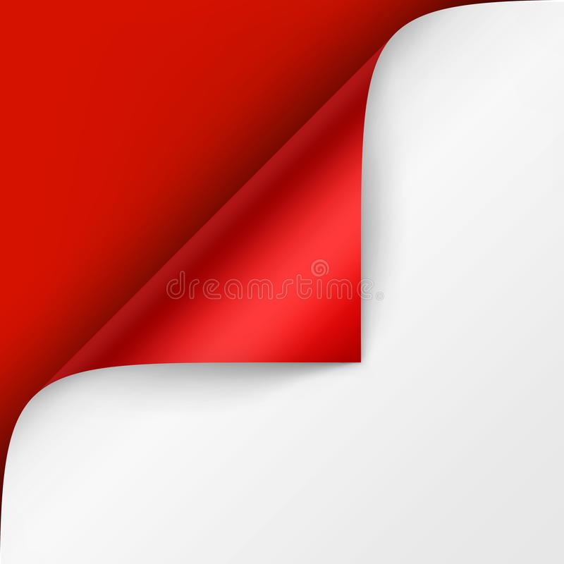 Vector Curled corner of White paper with shadow Mock up Close up Isolated on Bright Red Scarlet Background. Vector Curled corner of White paper with shadow Mock vector illustration