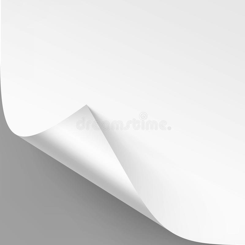 Vector Curled corner of White paper with shadow Mock up Close up Isolated on Gray Background. Vector Curled corner of White paper with shadow Mock up Close up vector illustration