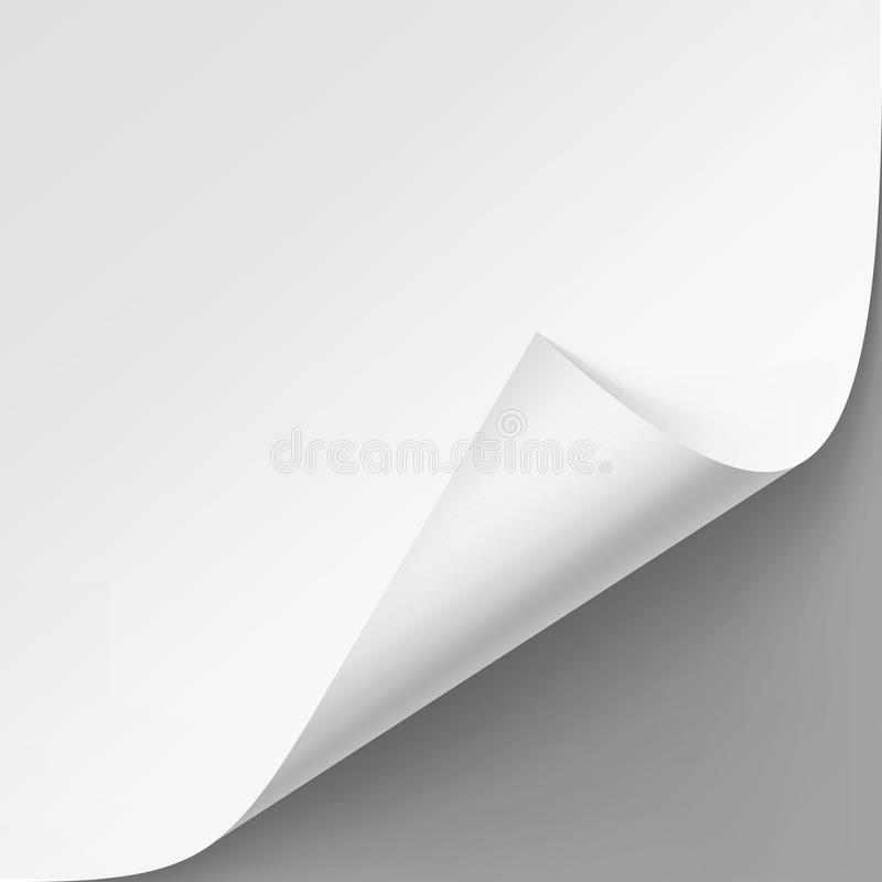 Vector Curled corner of White paper with shadow. Mock up Close up on Gray Background royalty free illustration