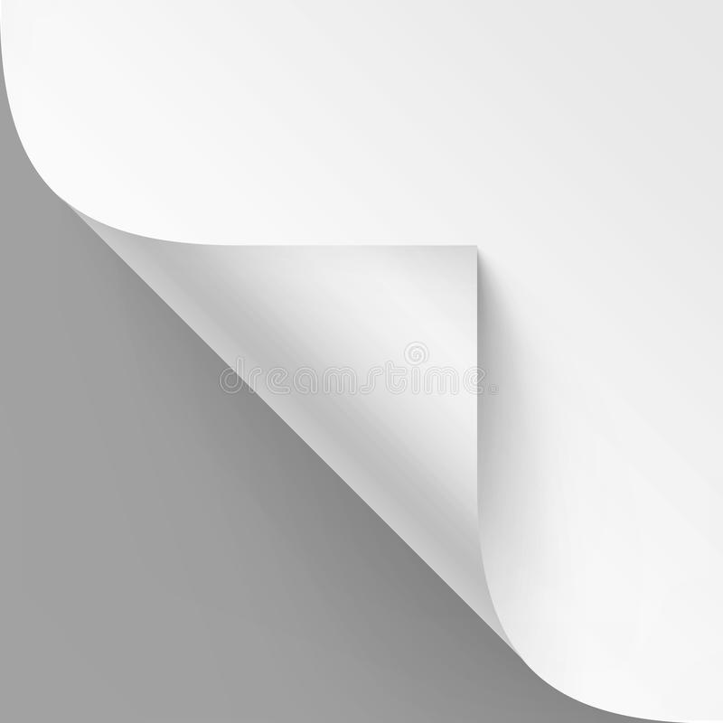 Vector Curled corner of White paper with shadow Mock up Close up Isolated on Gray Background. Vector Curled corner of White paper with shadow Mock up Close up stock illustration