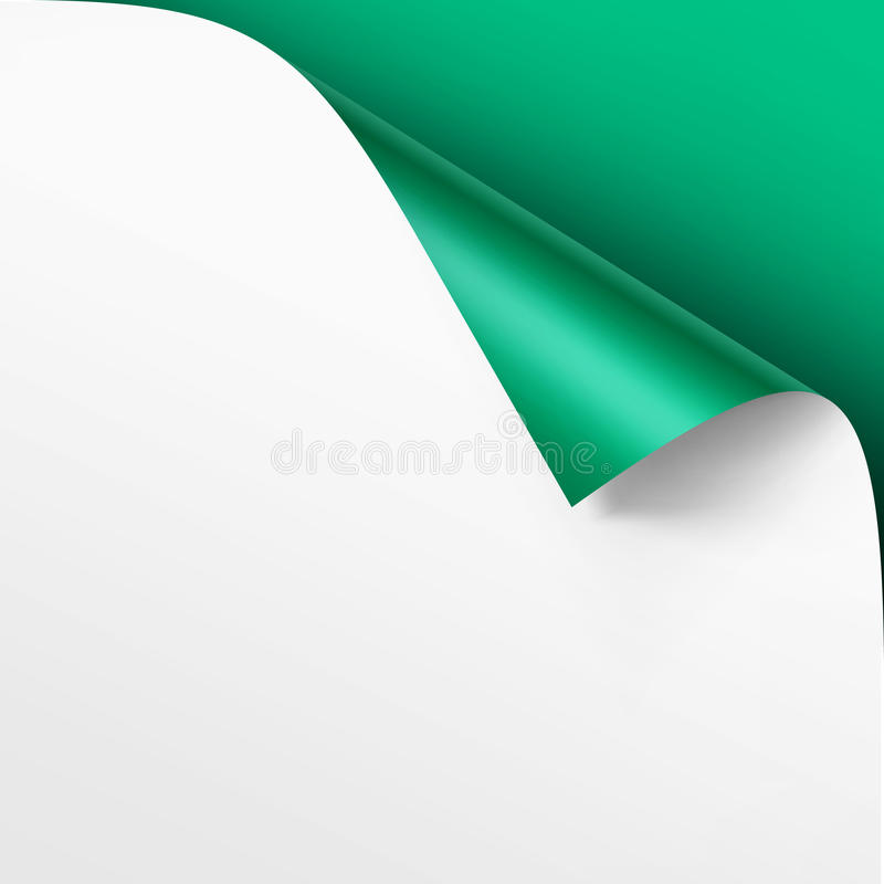 Vector Curled corner of White paper with shadow Mock up Close up Isolated on Green Background. Vector Curled corner of White paper with shadow Mock up Close up stock illustration