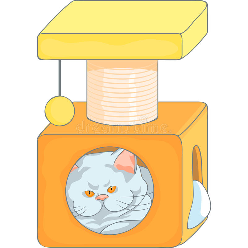 Vector cute british cat in the cat house with scra royalty free stock photography