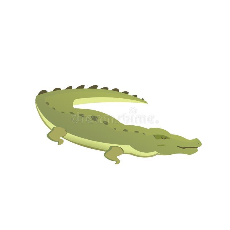 Vector cute crocodile . cartoon green crocodile stock illustration