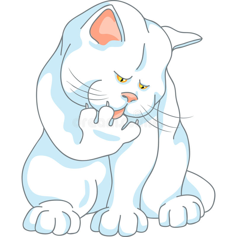 Vector cute white cat washes, licking his paw stock photography
