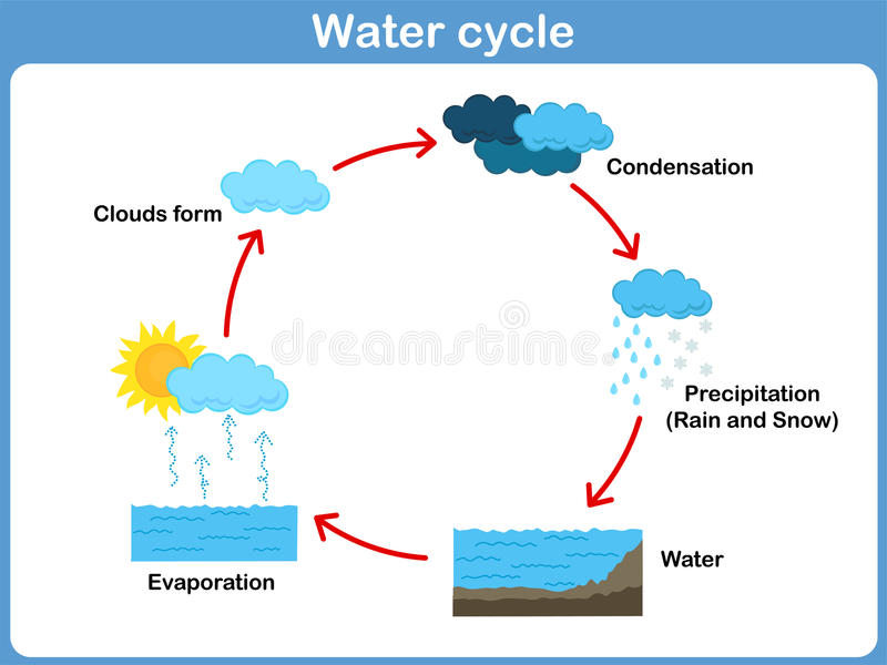Vector Cycle of water for kids. Cycle of water for kids