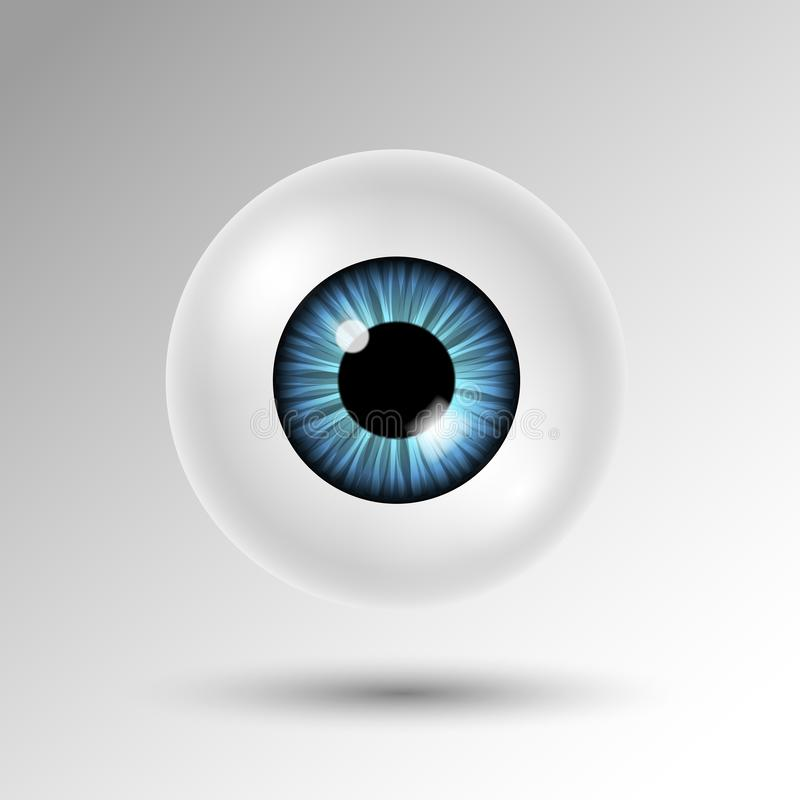 Vector 3d human eyeball with blue iris and shadow isolated on white background stock illustration