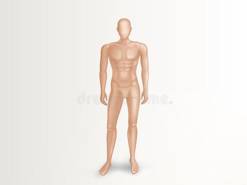 Vector 3d male mannequin, nude plastic dummy vector illustration