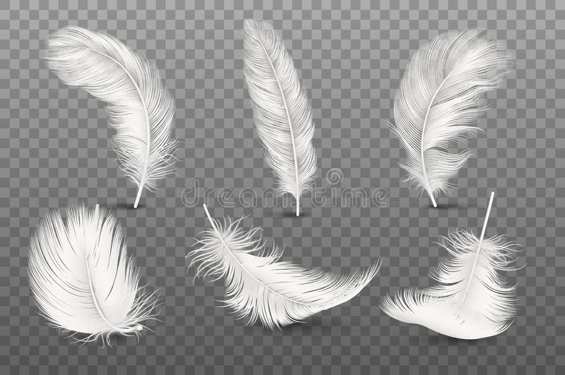 Vector 3d Realistic Different Falling White Fluffy Twirled Feather Set Closeup Isolated on Transparency Grid Background vector illustration