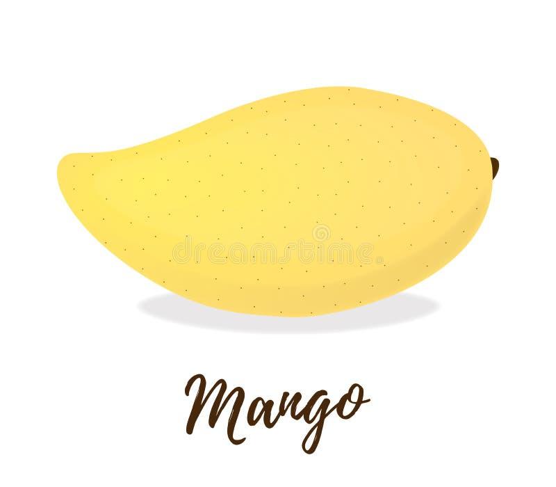 Vector 3d realistisch tropisch fruit - mango Exotische, rijpe voeding vector illustratie