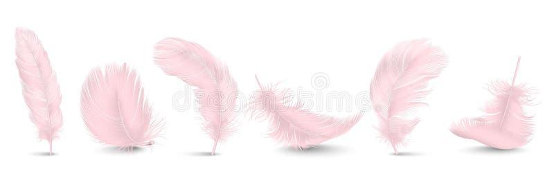 Vector 3d Realistische Verschillende Dalende Roze Pluizige Getolde Veer Vastgestelde die Close-up op Witte Achtergrond wordt geïs royalty-vrije illustratie