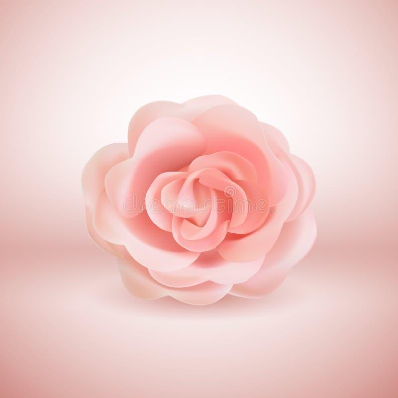 Vector 3d Rosa cor-de-rosa realística no fundo cor-de-rosa ilustração do vetor