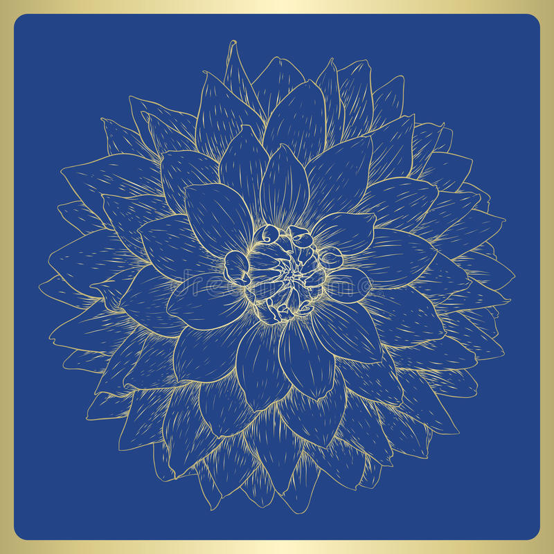 Download Vector Dahlia Flower. Royalty Free Stock Photo - Image: 27321285