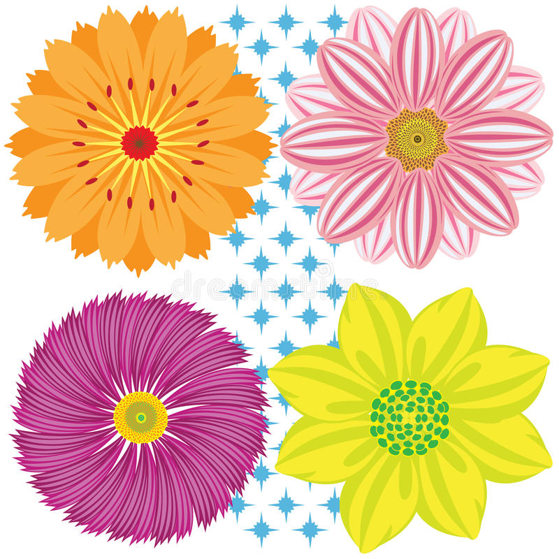 Vector dahlia. Various Dahlia Flowers Isolated on White Background royalty free illustration