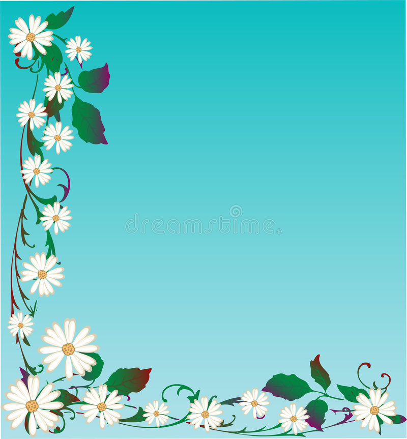 Vector Daisy Background royalty free stock image
