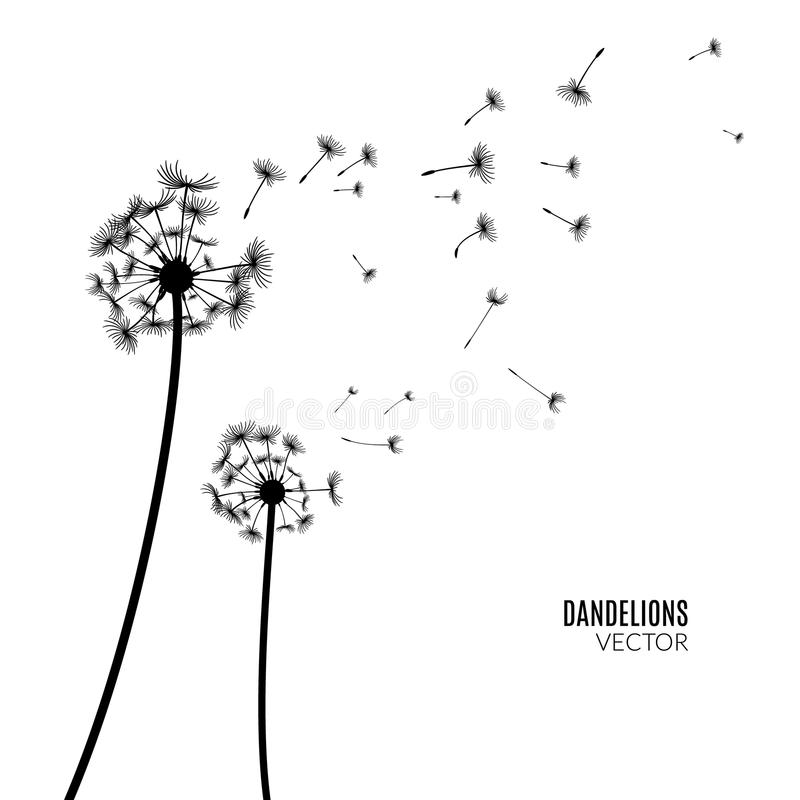 dandelions blowing the wind coloring pages | Vector Dandelion Silhouette. Flying Dandelion Buds Black ...