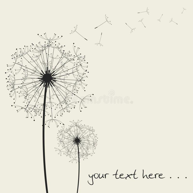 Download Vector dandelions... stock vector. Illustration of parsley - 7855587