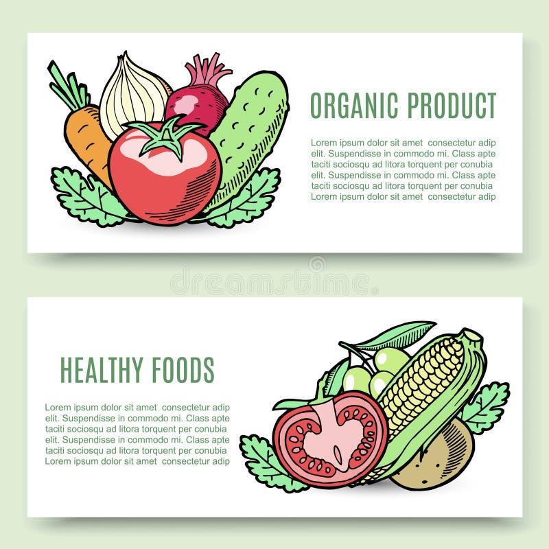 Vector de bannerreeks van de groentennatuurvoeding Veggie ontwerp met graan, tomaat, komkommer en aardappel, wortel De landbouw v stock illustratie