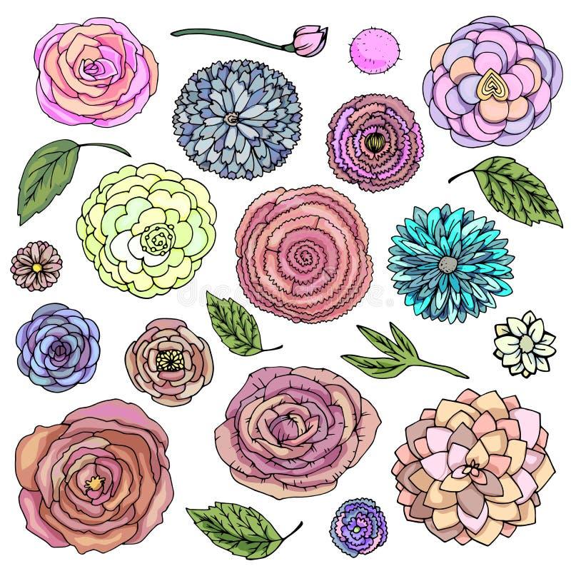 Vector de bloemkrabbels van de illustratiefantasie geplaatst heldere kleur Installaties die op witte achtergrond worden ge?soleer vector illustratie
