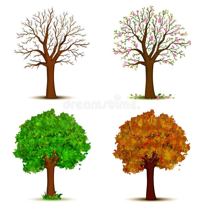 Vector de cuatro árboles de las estaciones libre illustration