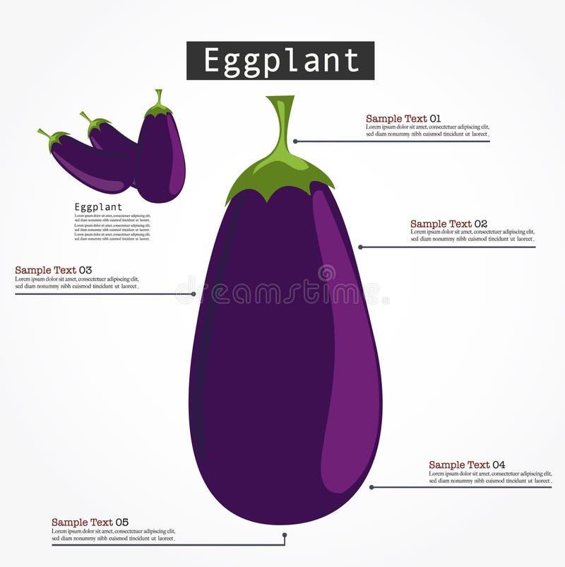 Vector de Infographic de la berenjena libre illustration