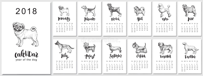 vector de kalenderontwerp van 2018 met hondenrassen Hand getrokken llustrations en kalligrafie stock illustratie