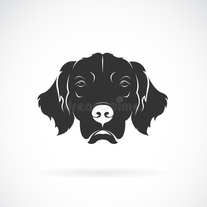 Vector de la cabeza de perro Rretriever de oro en un fondo blanco pet Animales Logotipo o icono del perro Vector acodado editable stock de ilustración