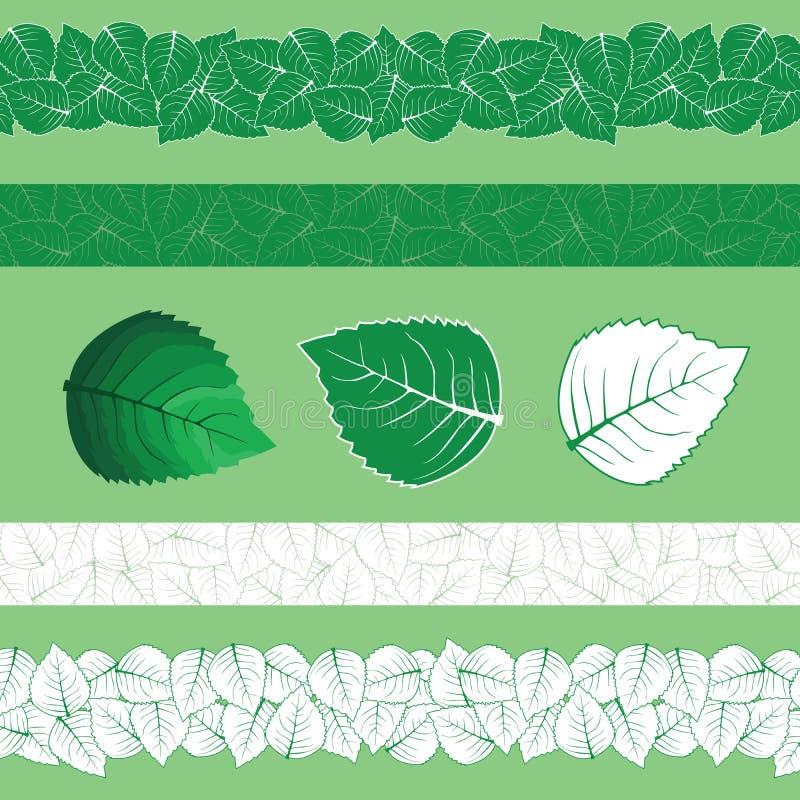 Vector de la menta y del mentol libre illustration