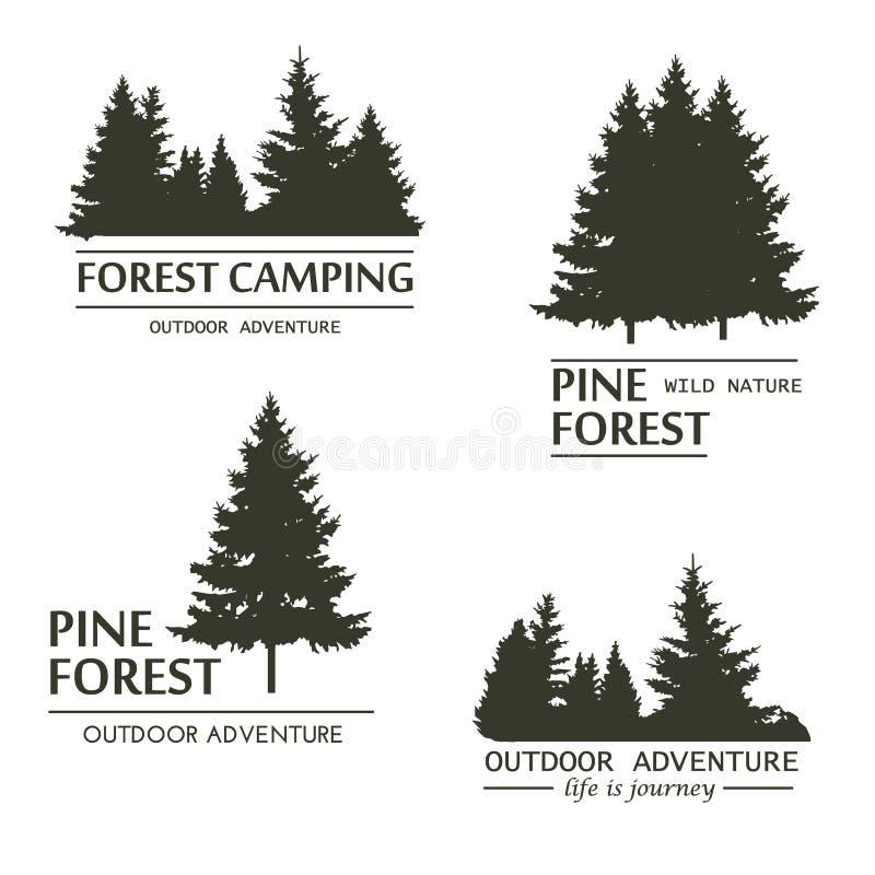Vector de la silueta del bosque del árbol de pino ilustración del vector