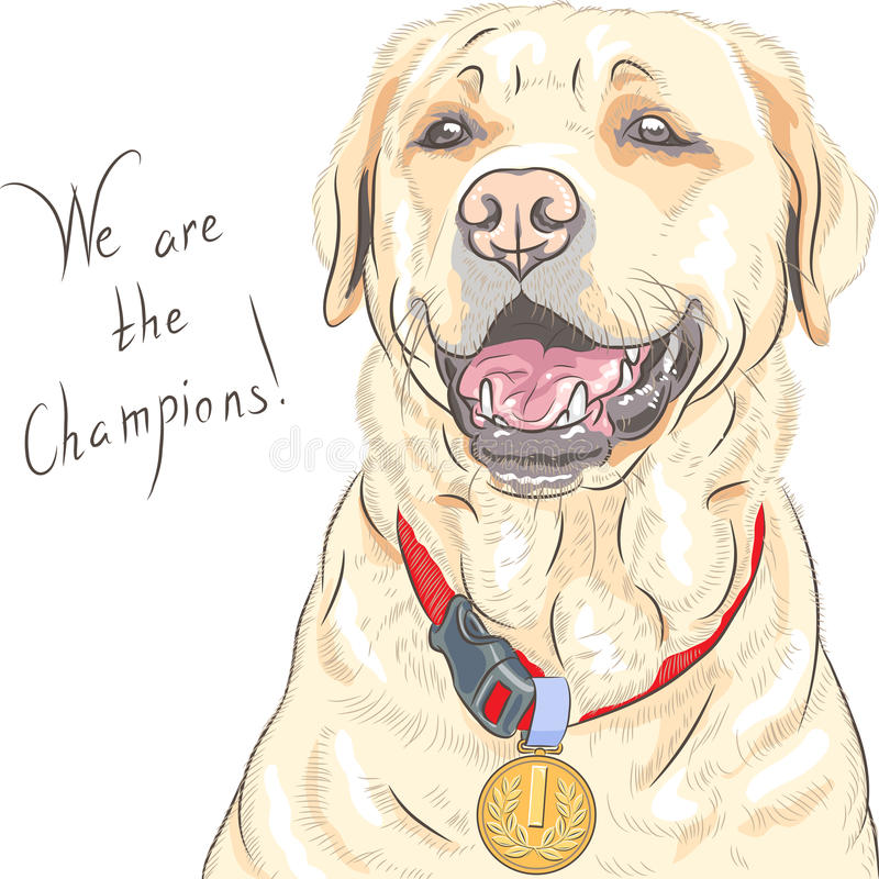 Vector de Labradorkampioen van het hondras royalty-vrije illustratie
