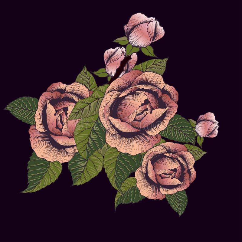 Vector de las flores Una rama de rosas con las hojas, las flores y los brotes Collage de flores y de hojas en el fondo blanco libre illustration